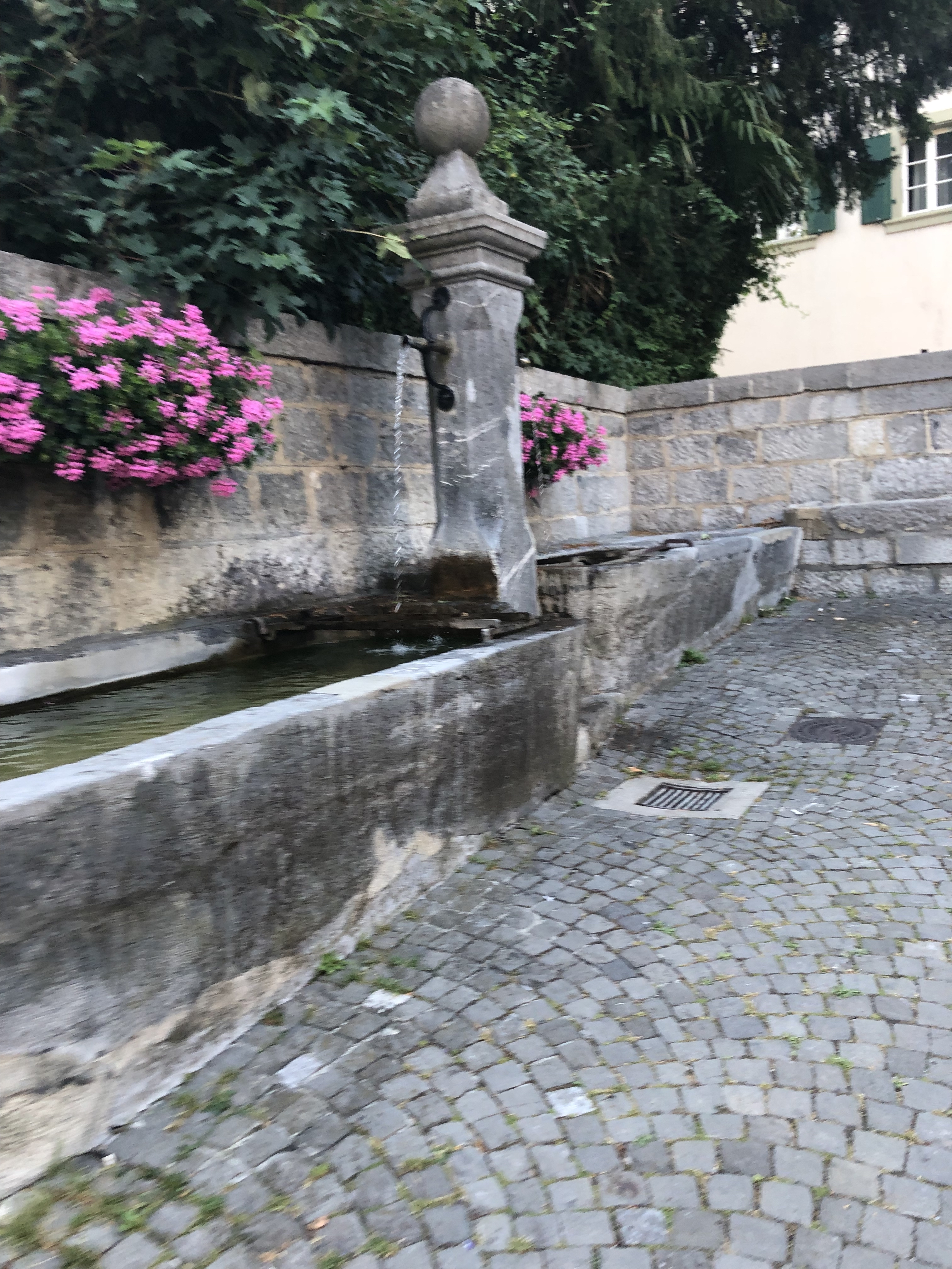 A public outdoor fountain for drinking water with two bunches of pink flowers